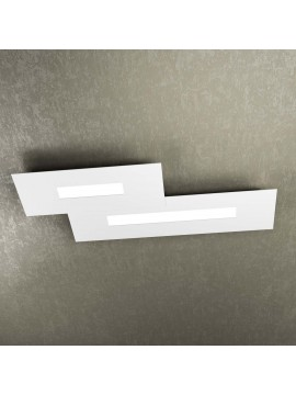 Modern design ceiling light 2 lights tpl 1138-M2 white