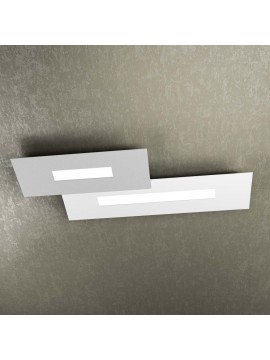 Modern design ceiling light 2 lights tpl 1138-M2 white and gray