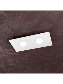 Modern ceiling light 2 lights tpl design 1127-pl2r